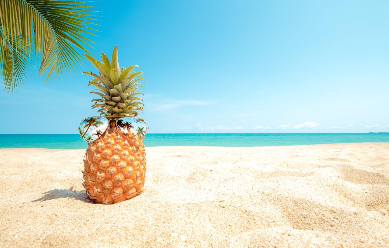 Обои песок, море, пляж, лето, небо, пальмы, отдых, берег, очки ...