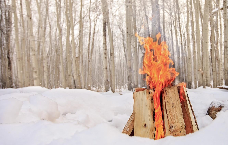 Фото обои зима, снег, огонь, костёр