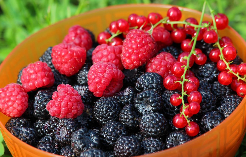 Лето ягоды картинки на рабочий стол