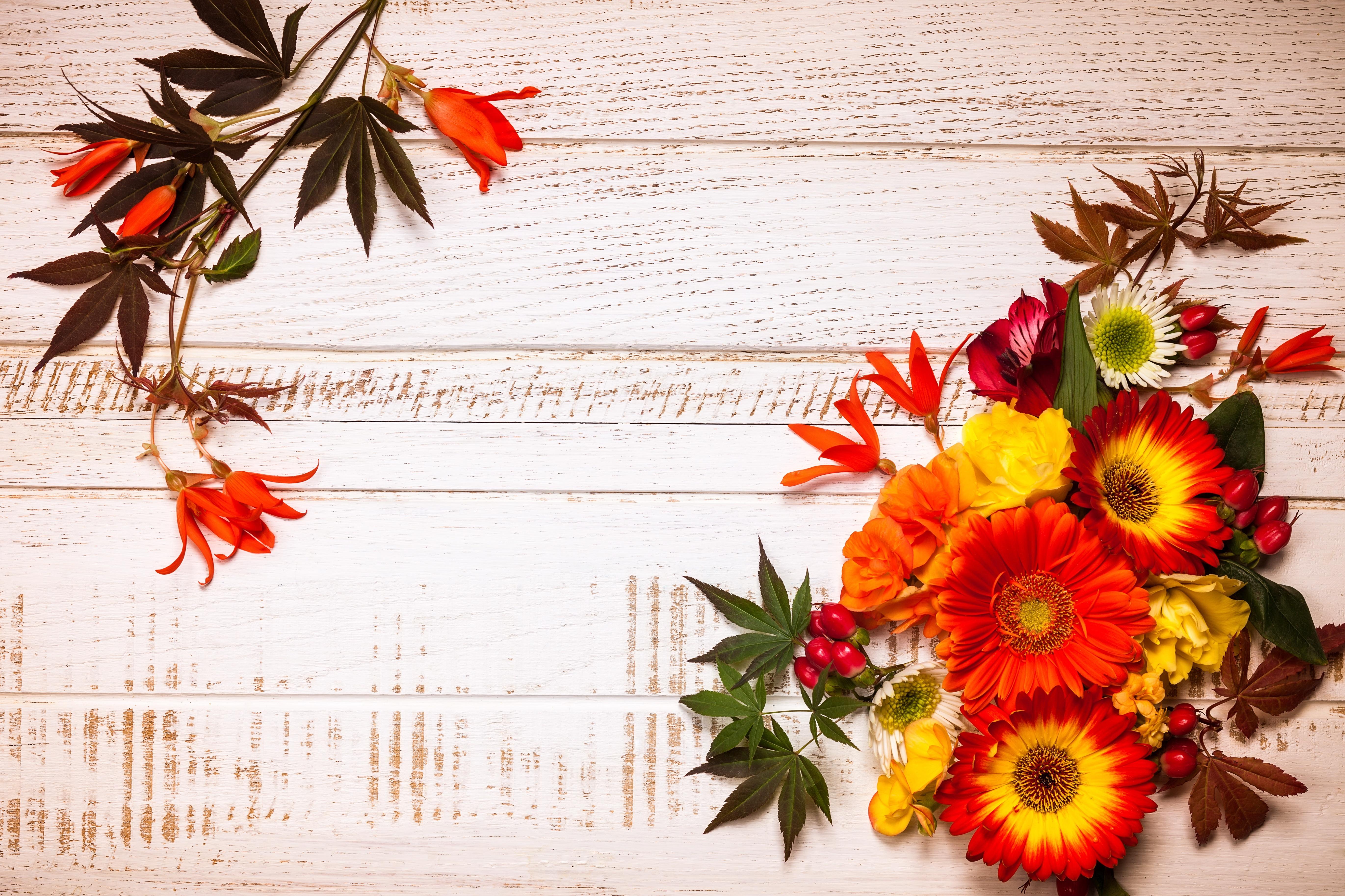 Поздравлением месяцем, фоны для открыток день учителя