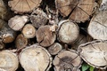 Картинка wood, Trees, firewood, pattern