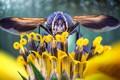 Картинка цветок, глаза, журчалка, природа, насекомое, крылья, голова