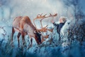 Картинка радость, колокольчики, олень, зима, природа, снег, ребёнок, животное