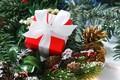 Картинка праздник, новый год, ель, подарки, бант, шишки