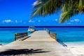 Картинка пальма, отдых, пирс, море