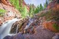 Картинка камни, горы, вода, деревья, Telluride Colorado