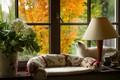 Картинка лампа, вид из окна, на подоконнике, белая кошка