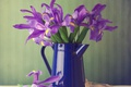 Картинка цветы, букет, кувшин, ирисы