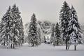 Картинка деревья, природа, горы, снег, зима, домик