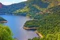 Картинка зелень, лес, солнце, деревья, горы, побережье, Франция, залив, домики, Corsica