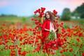 Картинка цветы, девочка, маки, природа