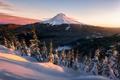 Картинка зима, лес, небо, свет, снег, гора, вечер, утро, США, национальный парк, штат Вашингтон, Каскадные горы, ...