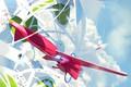 Картинка небо, облака, летательный аппарат, Arrival of the Spica