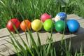 Картинка яйца, пасха, весна 2018, mamala ©