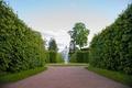 Картинка сад, статуи, дворец, спб, пушкин, барокко, санкт петербург, екатерининский дворец