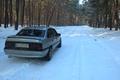 Картинка зима, лес, деревья, Opel, vectraa, Vectra
