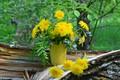 Картинка лето, цветы, природа, букет, одуванчики