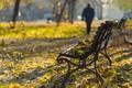 Картинка скамья, осень, листья