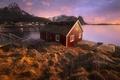 Картинка norway, Reine, Lofoten, arctique