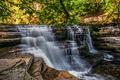 Картинка лес, деревья, пейзаж, скалы, Англия, водопад, поток, Йоркшир