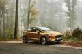 Картинка Ford, золотистый, Fiesta, Active, хэтчбэк, 2017