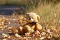 Картинка травка, мишка, осень, листочки, игрушка