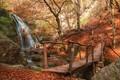 Картинка осень, деревья, мост, водопад