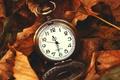Картинка листья, часы, сухие, клен, vintage, винтаж, карманные часы, pocket watch
