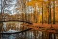 Картинка парк, отражение, мост, деревья, Brummen, Voorstonden, Брюммен, Ворстонден, Netherlands, Нидерланды, озеро, осень