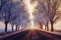 Картинка зима, иней, дорога, туман