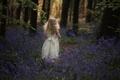 Картинка колокольчики, лес, девочка, кудри, цветы