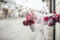 Картинка розы, велосипед, улица