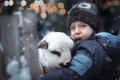Картинка мальчик, ягнёнок, зима, ребёнок, животное, боке