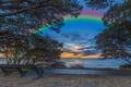Картинка закат, облака, дорожка, ветки, небо, листва, вечер, море, Christchurch, побережье, деревья, Англия, горизонт, скамейка, радуга
