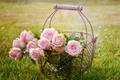 Картинка лето, цветы, розы, букет, розовые, корзинка