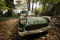 Картинка лом, листья, машина