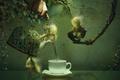 Картинка ветки, человечки, листья, плющ, чаепитие, рука, чашка, чайник, графика