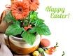 Картинка герберы, декор, фрезия, пасхальные яйца, праздник, пасха