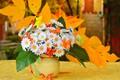 Картинка Листья, Цветочки, Flowers