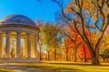 Картинка мемориал, парк, деревья, листья, Вашингтон, желтые, солнце, осень, США