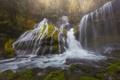 Картинка лес, водопад, каскад, Washington, штат Вашингтон, Columbia River Gorge, Panther Creek Falls, Gifford Pinchot National ...