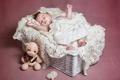 Картинка мишка, корзина, младенец, малыш, ребёнок, игрушка