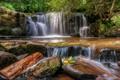 Картинка камни, Уэльс, Ллансантфраед, лес, водопад