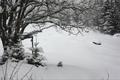 Картинка Зима, Снег, Мороз, Winter, Frost, Snow, Сугробы