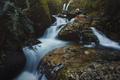 Картинка каскад, лес, ветки, пейзаж, лето, поток, вода, листья, валуны, водопад, природа, камни