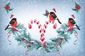 Картинка снег, праздник, новый год, гирлянда, карамель, синицы