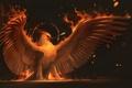 Картинка огонь, птица, крылья, арт, стрела, феникс, phoenix