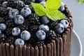 Картинка черника, ежевика, шоколад, лист, макро, торт, ягоды