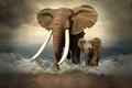 Картинка слонёнок, бивни, слон, фотошоп, слоны, море