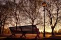Картинка Баттерси Парк, Англия, фонарь, Лондон, скамья